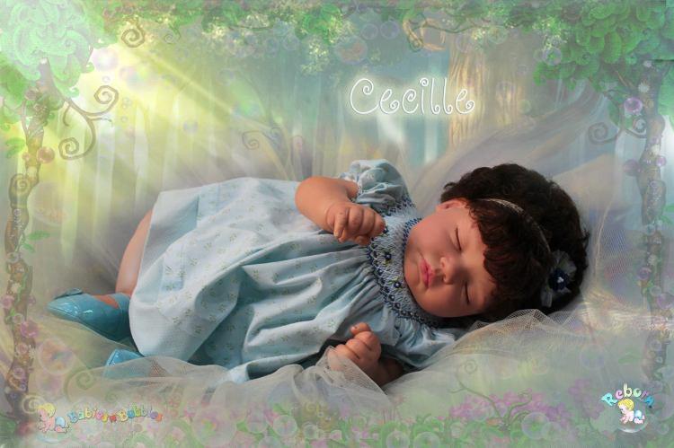 Cecille reborn®